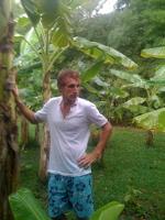 Banaanipuude vilus